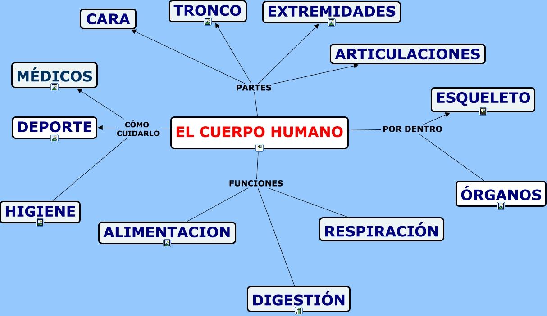 EL CUERPO HUMANO.html